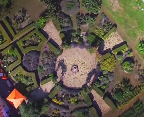 Der Sanddorn-Garten in Petzow aus Vogelperspektive